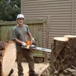 Stump Cutting Seattle WA