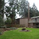 Bringing Seattle Tree Down