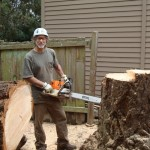 Stump Cutting Seattle WA